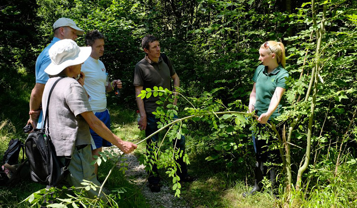 A group of people in outdoors, among plants, chatting